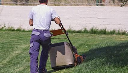 grounds maintenance bristol